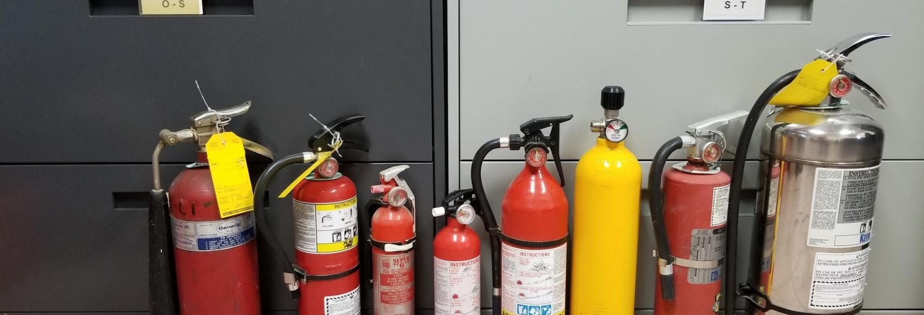 several extinguishers standing on the floor in a row varying sizes