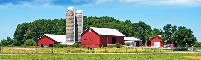 farm with barns and silos