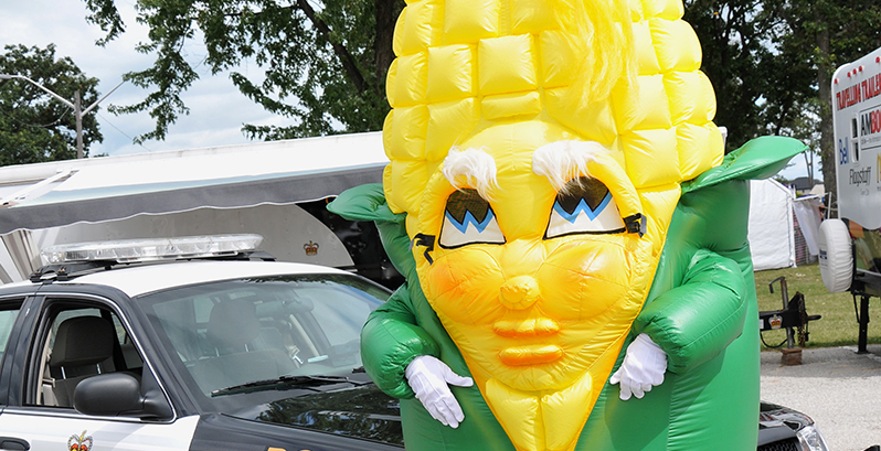 image of nibby the corn festival mascot